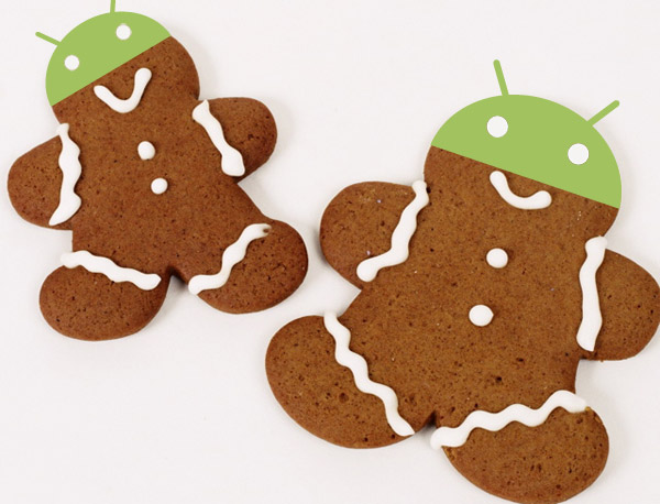 Gingerbread ( Android 2.3 )